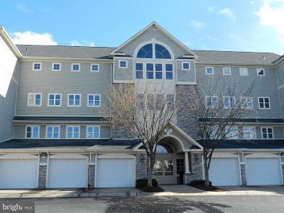Woodbridge Condo For Sale: 1621 Ladue Court #401