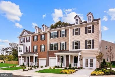Prince William County Townhouse For Sale: 1608 Dorothy Lane