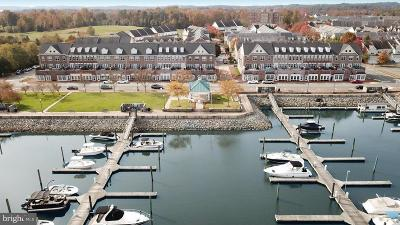 Prince William County Condo For Sale: 551 Harbor Side Street