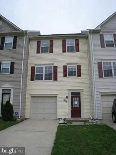 Bristow, Haymarket, Gainesville, Nokesville, Bealeton, Manassas Rental For Rent: 8001 Flager Circle