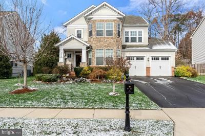Prince William County Single Family Home For Auction: 12942 Luca Station Way