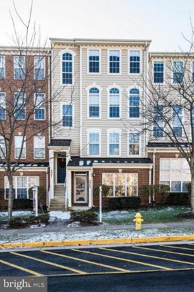 Prince William County Condo For Sale: 5041 Anchorstone Drive