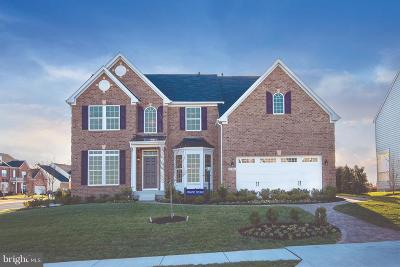 Manassas Single Family Home For Sale: 2002 Hoadly Manor Drive