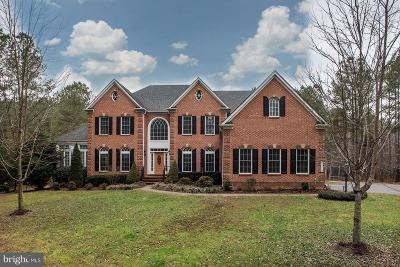 Bristow, Nokesville Single Family Home For Sale: 14610 Sulky Run Court