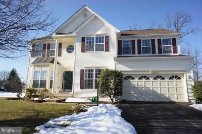 Manassas Single Family Home For Sale: 10396 Lime Tree Court