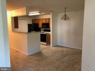 Rental For Rent: 14151 Cuddy Loop #202