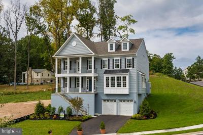 Prince William County, Fairfax County, Fredericksburg City, Fauquier County Single Family Home For Sale: 19226 Stoney Ridge Place