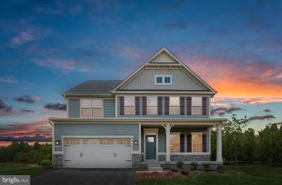 Bristow, Nokesville Single Family Home For Sale: Carriage Ford Road