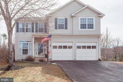 Bristow, Gainesville, Haymarket, Woodbridge, Occoquan, Manassas, Nokesville Single Family Home For Sale: 6233 Oaklawn Lane