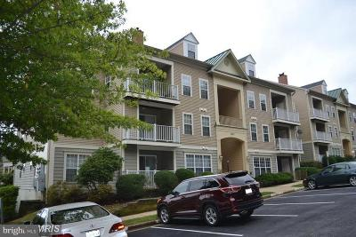 Woodbridge Condo For Sale: 1037 Gardenview Loop #101