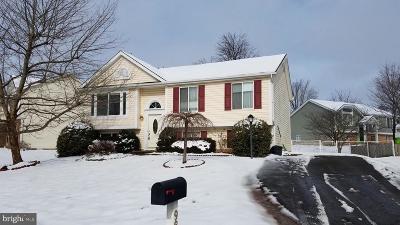Manassas Single Family Home For Sale: 9862 Nimitz Court