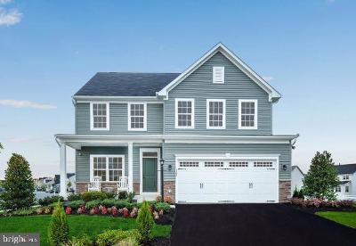 Nokesville Single Family Home For Sale: Edmund Saul Court