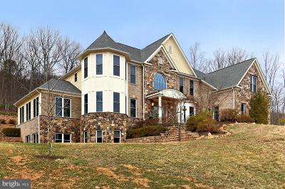 Haymarket VA Single Family Home For Sale: $1,249,888