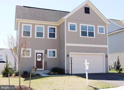 Bristow, Nokesville Single Family Home For Sale: 11921 Blue Violet Way
