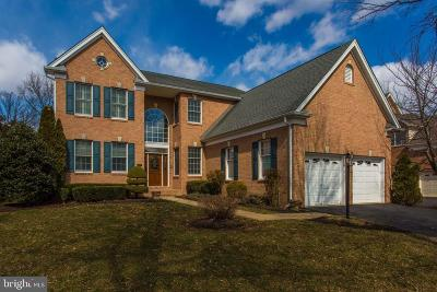 Haymarket Single Family Home For Sale: 5728 Solheim Cup Drive