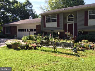 Woodbridge Single Family Home For Sale: 14376 Southgate Court