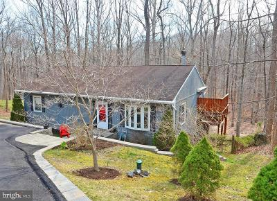 Bristow, Nokesville Single Family Home For Sale: 14586 Leary Street