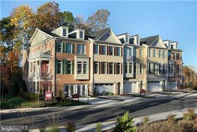 Gainesville, Haymarket Townhouse For Sale: 32 Turtle Creek Circle