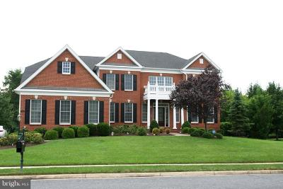 Haymarket VA Single Family Home For Sale: $880,000