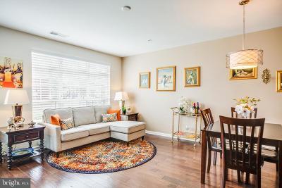 Dumfries Condo For Sale: 3005 Chesapeake Drive #9