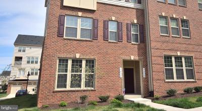 Gainesville VA Condo For Sale: $365,000