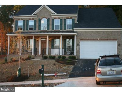 Prince William County Single Family Home For Sale: 16534 Louisville Place