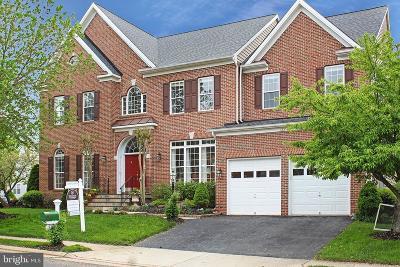 Haymarket Single Family Home For Sale: 13370 Piedmont Vista