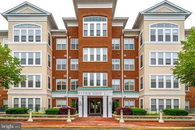 Woodbridge Condo For Sale: 440 Belmont Bay Drive #401