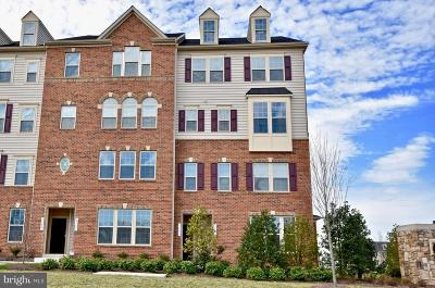 Gainesville, Haymarket Condo For Sale: 7795 Culloden Crest Lane
