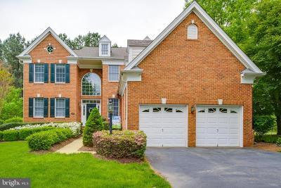 Haymarket Single Family Home For Sale: 15067 Jupiter Hills Lane