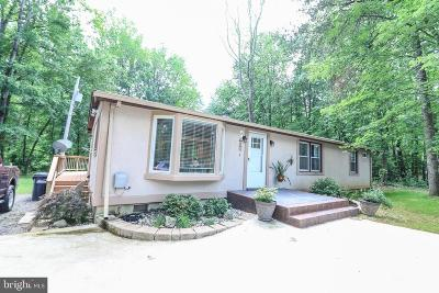 Manassas Single Family Home For Sale: 7287 Token Valley Road
