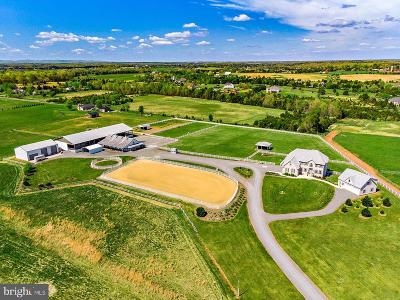 Bristow, Nokesville Farm For Sale: 10900 Misty Creek Court