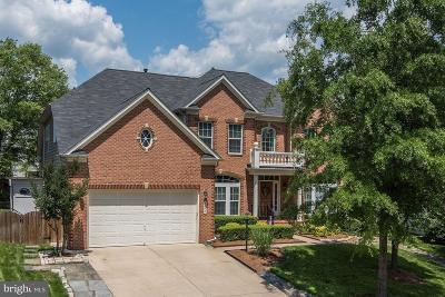 Manassas Single Family Home For Sale: 5547 Victory Loop