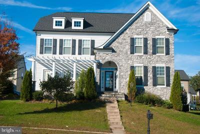 Woodbridge Single Family Home For Sale: 2204 Port Potomac Avenue