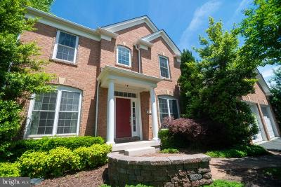 Manassas Single Family Home For Sale: 9566 Mountwood Drive