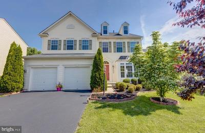 Bristow, Nokesville Single Family Home For Sale: 8973 Chianti Terrace
