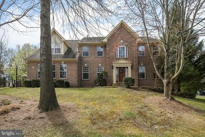 Bristow, Haymarket, Gainesville, Nokesville, Bealeton, Manassas Rental For Rent: 8029 County Down Court