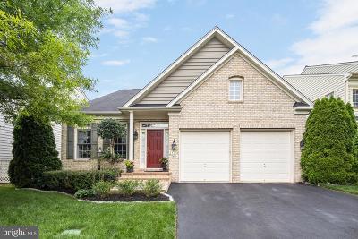 Haymarket Single Family Home For Sale: 13861 Piedmont Vista Drive