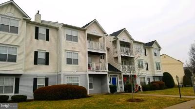 Manassas Condo For Sale: 8050 Lisle Drive #303