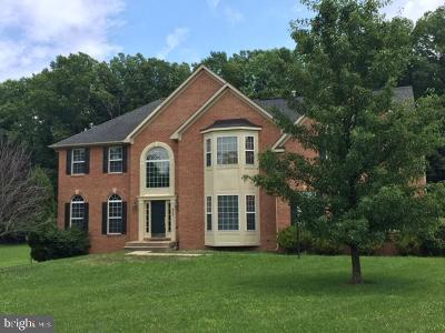 Manassas Single Family Home For Sale: 9755 Colbert Lane