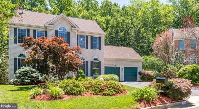 Prince William County Single Family Home For Sale: 3901 Leaf Lawn Lane
