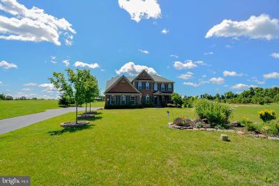 Prince William County Single Family Home For Sale: 13001 Cavendish Run Court