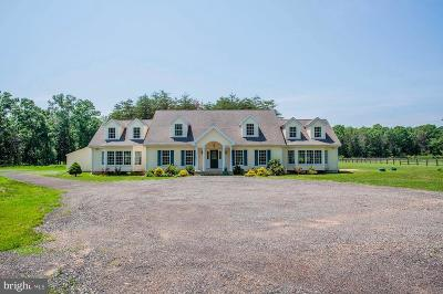 Nokesville Single Family Home For Sale: 13325 Hershey Drive