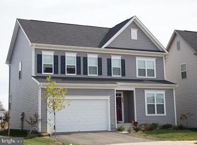 Bristow Single Family Home For Sale: Mayapple Court