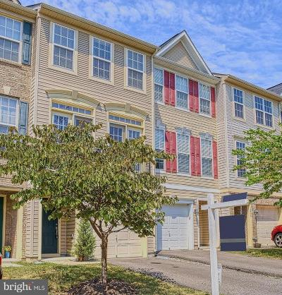 Prince William County Condo For Sale: 15726 John Diskin Circle #147