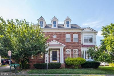 Bristow, Haymarket, Gainesville, Nokesville, Bealeton, Manassas Rental For Rent: 10060 Orland Stone Drive
