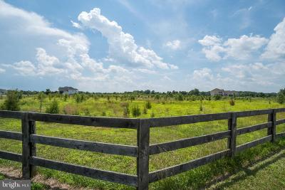 Bristow Residential Lots & Land For Sale: 10961 Meadow Walk Lane