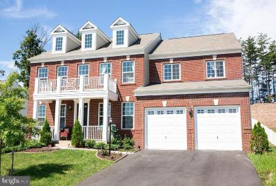 Prince William County Single Family Home For Sale: 15616 Wingspan Court