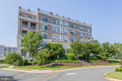 Prince William County Condo For Sale: 820 Belmont Bay Drive #306