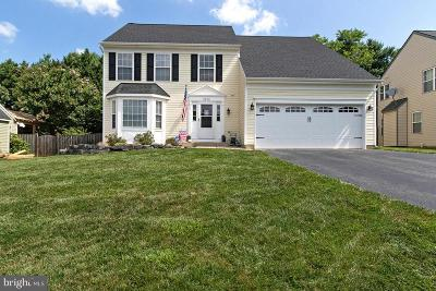 Manassas Single Family Home For Sale: 9576 Manassas Forge Drive